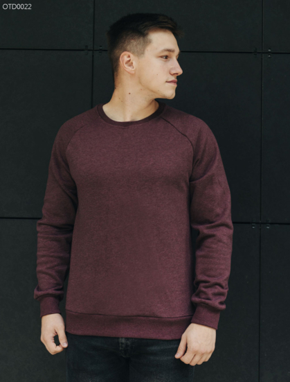 Свитшот Staff bordo logo basic fleece